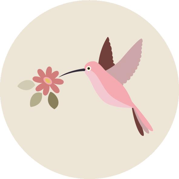 muurcirkel tropisch kolibri