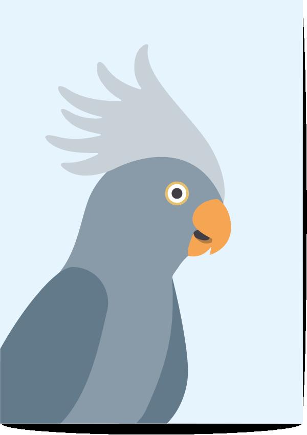 poster kaketoe blauw